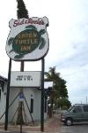 Green Turtle Rebuild_1