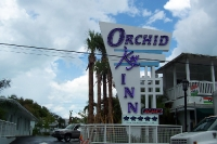Orchid Key_1